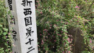 【萩の名所】東光院のミヤギノハギ